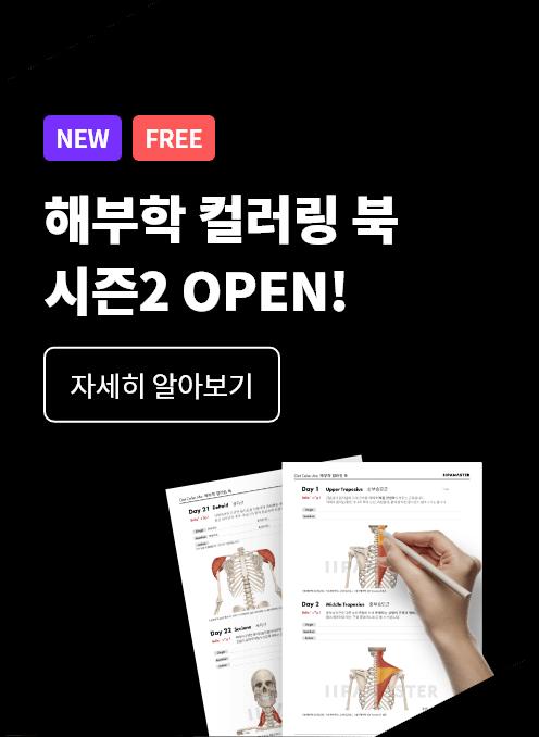 해부학 컬러링 북 시즌2 오픈
